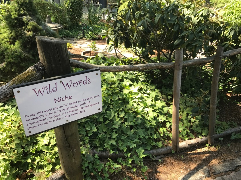 Wild Words Niche learning plaque