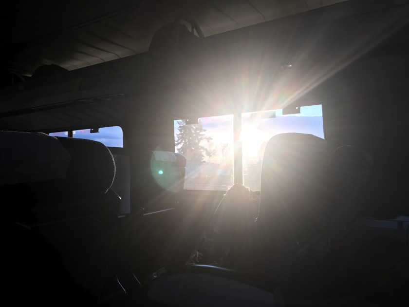The two-thirty train from Portland is a fantastic way to appreciate the Willamette Valley Sun shining through the window looking south west