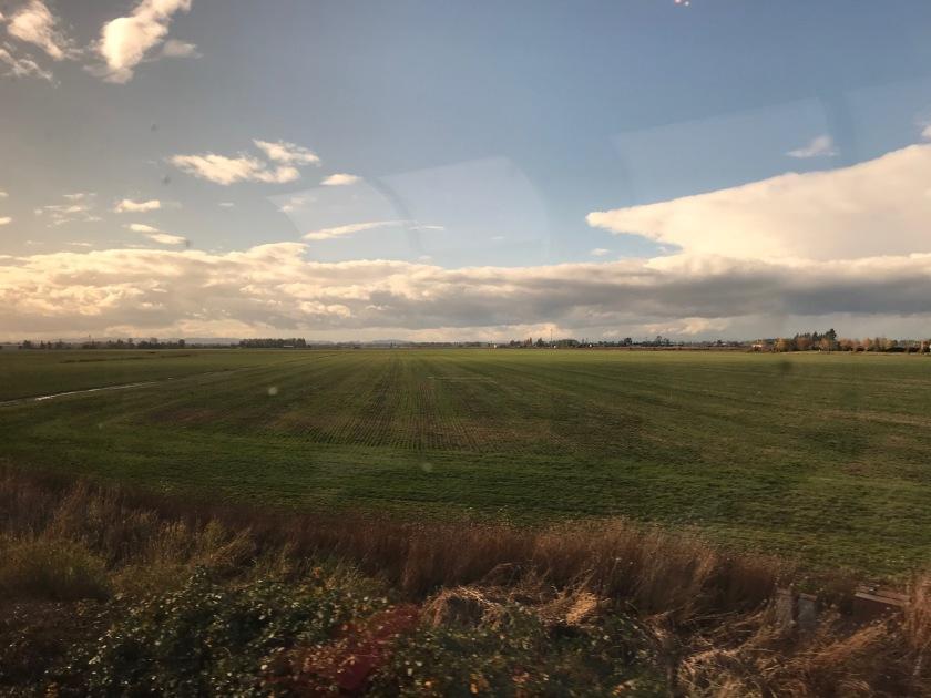 Grasslands seen from the train
